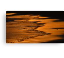 Golden Shores Canvas Print
