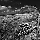 Pen-y-Ghent mono by Shaun Whiteman