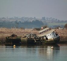 Not Very Seaworthy, Seen Better Days by lynn carter