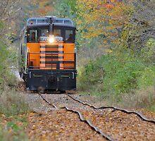 Bad Track Ahead !! by Ned Elliott