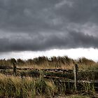 Storm Front by Doug Hockman