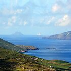 Skellig Islands by aquinnahimages