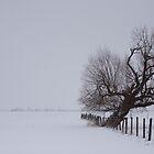 Winter Farmer's Field by Benjamin Brauer