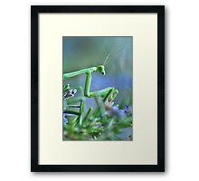 ~  Mantis Girl  ~ Framed Print