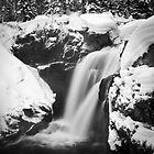 Moose Falls of Yellowstone in Winter by cavaroc