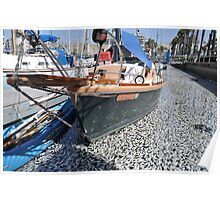 Million Dead Fish Redondo Beach, Calif.. Poster