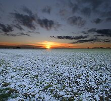 Suffolk sunset over snow by Christopher Cullen