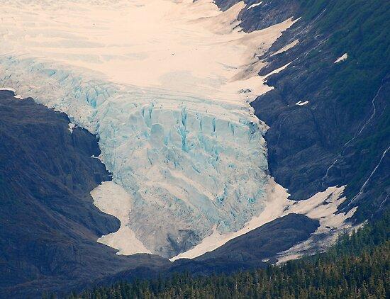 Alaskan Glacier by Neville Gafen