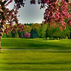 Dreamy 18th Hole by Monica M. Scanlan