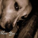 I Miss You... by Dawn di Donato