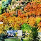Autumn in Machynlleth by missmoneypenny