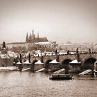 charles bridge by gruntpig