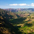 Slithering River - Waimea Canyon, Kauai, Hawaii by Matthew Kocin