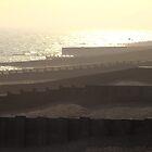 Seafront Sunset by jimclark