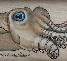 Spiney Cuttlefish by Fay Helfer