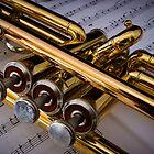 Trumpet Valves by John Quixley