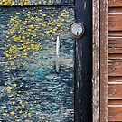Yellow and Blue: Door by physiognomic