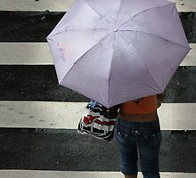Violet umbrella by jorginho