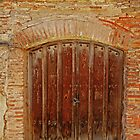 Old wooden spanish door by IKGM