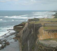 Caribbean Cliff - San Juan Puerto Rico by scotth125