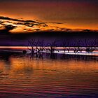 Menindee Lakes In Purple And Orange by Julienne  Bowser