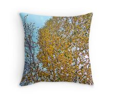 Birch Bounty Throw Pillow