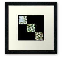 False Spring Triptych Print Framed Print