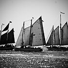 Three 19th Century Schooners by Janis Lee Colon