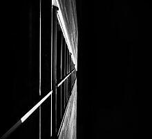 Sidescaper by Bob Larson