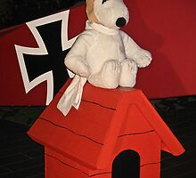 Snoopy and the Red Baron! by heatherfriedman
