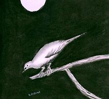 Bird in the Night by Debbie  Adams