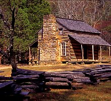 Smoky Mtn. Log Cabin by ©  Paul W. Faust