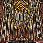 St. Vitus Cathedral, Prague by Wilf Kordts