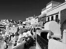 Walkways & Homes ~ Black & White by Lucinda Walter