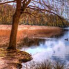 Lake In Spring by Paul Eyre