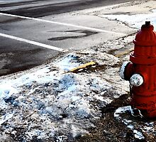 Frozen Fire-Hydrant by Madison Jacox