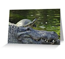Alligator and Turtle, As Is Greeting Card