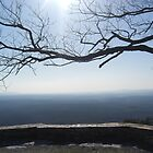 At the Top of Cheaha by Charldia