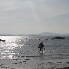 Scuba Diving, Kenmare bay, Eire by JaffaTorquay