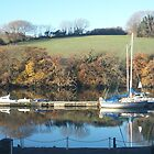 Kingsbridge Estuary, View from my office by JaffaTorquay