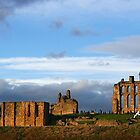 Tynemouth Priory in evening sun by Harry Purves