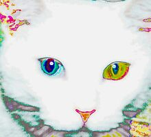 Everwhite, the cat by ♥⊱ B. Randi Bailey