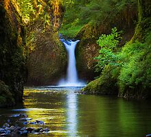 Punchbowl Falls by Inge Johnsson