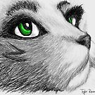 Emerald-Eyed Cat by Porcupine