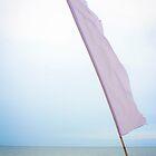 Sailing - Puerto Princesa Palawan by Michael  Habal