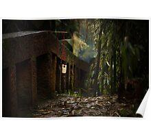 bamboo sea ... Poster
