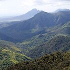 Panoramic view of Black River Gorge ,Mauritius by rajeshbac