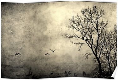 Birds of Hatzic by Annie Lemay  Photography