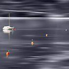 sailing boat by hannes cmarits