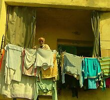 Cairo wash day 2 by HennaGoddess